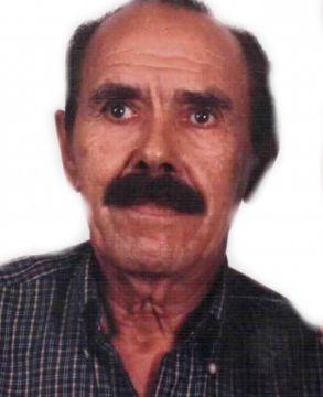 Luiz Januário Alonso Garcia